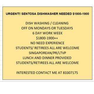 URGENT DISHWASHER NEEDED AT SENTOSA CAFE!!