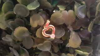 Heart w/ Stone Stainless Pendant