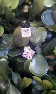 Square Stone Stainless Earrings