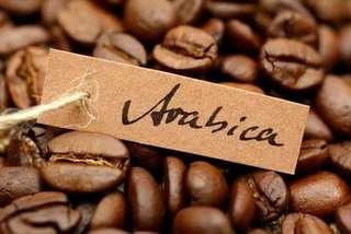 Kopi Arabica Murni (bubuk & biji kopi sangrai)