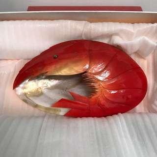 青島貝雕 蝦貝殼