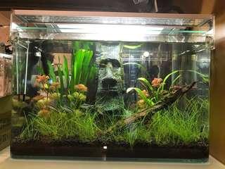 魚缸擺設- 水草LED 燈
