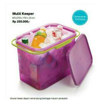 Tupperware Multi Keeper