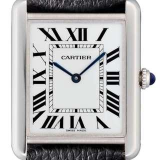 Cartier WSTA0028