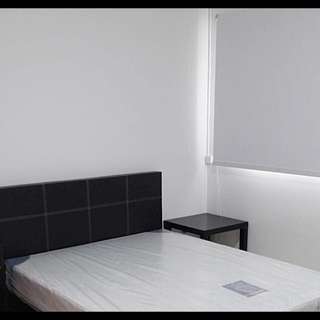 Spacious Common Room for Rent