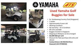Used electric buggy