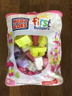 Mega Bloks Mega Big Building Bag (80Pcs)