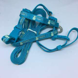Nylon Cat Harness and Leash glow in the Dark Set with ID Tags ~ BLUE
