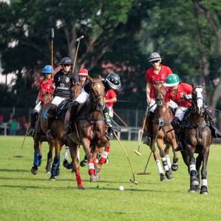 Polo Club family membership for both Equestrian and Polo (2 adults and kids below 23)