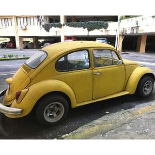 Volkswagen Classic Beetle for Sale
