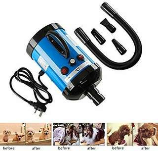 2800W Pet Dog ,Cat, Horse, small animal.   Grooming Hair Dryer Blower Heater Hairdryer Blaster with 3 Optional Nozzles, Low Noise & Stepless Speed.  SH-168
