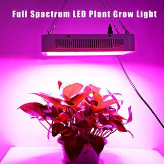 #July100 - 400W ( TRUE 140W ) LED PLANT GROW LIGHT PANEL FULL SPECTRUM SUSPENSION LAMP SQUARE SHAPE FOR HYDROPONICS INDOOR SEEDLING (WHITE)