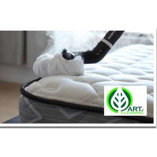 Proffesional Mattress Cleaning