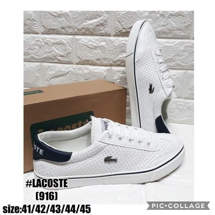 c075357efd3e Lacoste Shoes Size 41 to 45 P2600