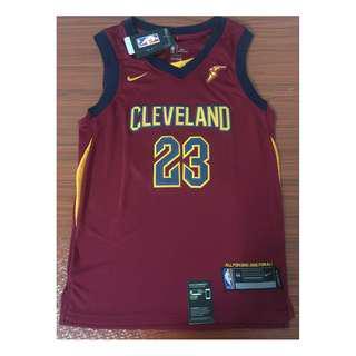 Nike Jersey NIKE Cleveland Cavaliers Lebron James