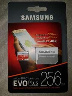 Samsung EVO PLUS 256GB