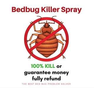Bed Bugs Killer, best BEDBUG spray