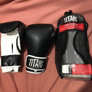 Boxing Gloves (Titans Brand)