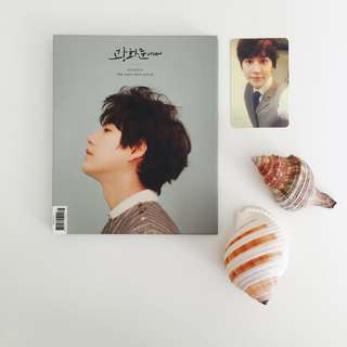 Super Junior Kyuhyun At Gwanghwamun Album & Photocard