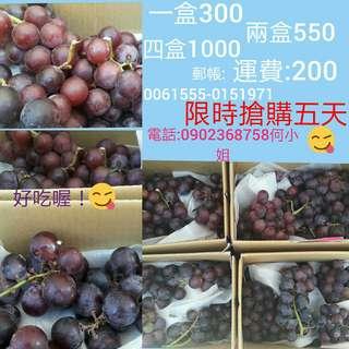 🚚 巨峰葡萄禮盒