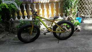 Rhino Fat Bike