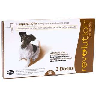[Free Shipping] BNIB Revolution For Dogs 5.1kg to 10kg (Brown)