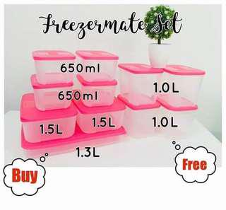 Tupperware 11 pcs  Freezermate Set
