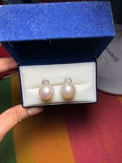 Golden Lady South Sea Pearl Earrings