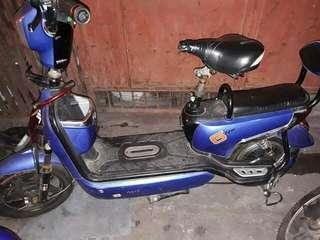 Ebike -Motor