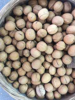 🚚 Fresh Onsite Roast Walnut, Hazel Nut, Almond, Pinenut, white pumpkin seeds...
