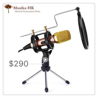Studio Microphone (With Stand)