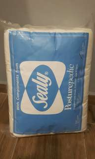 New Sealy King size mattress protector