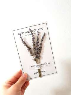 Dried Lavender Flowers Card