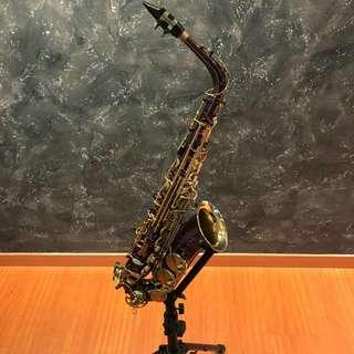 🚚 Chateau VCH221 Purple Alto Saxophone