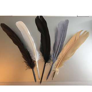 Feather Pencils (Earth Colors)