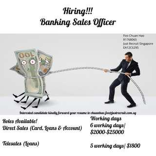 Banking Sales Officer