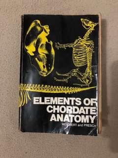 Elements of Cordate Anatomy