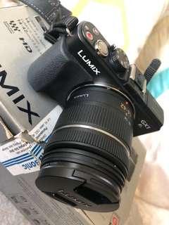Lumix DMC -GX1W