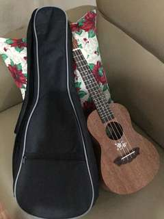 Ukelele for sale with FREE padded bag