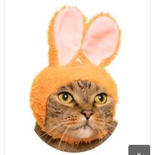 🚚 降價!貓咪頭套🥕🥕
