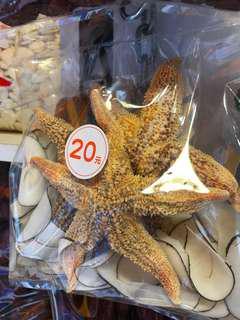海星海底椰湯包