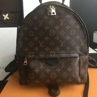 Authentic Louis Vuitton Palm Springs MM Backpack