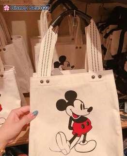 DISNEY CLASSIC 3D BAG ! From TOKYO's Disneyland!