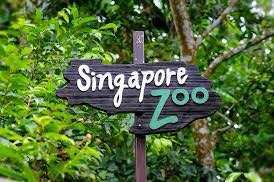 Zoo For 21st 22nd July