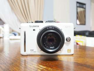 Panasonic LUMIX GF1 with 25mm f1.4 lens