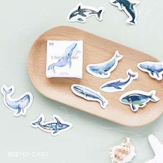 [PO] whale sticker pack