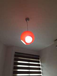 Designer Ceiling Lamp