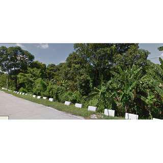 tarlac commercial lot farm along mc arthur highway moncada