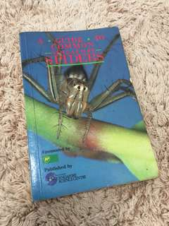 Guide to common Singapore spiders