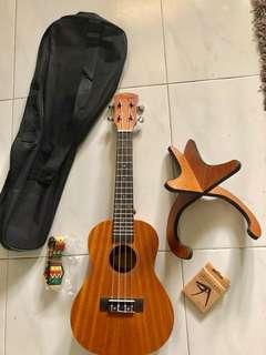 Fully tuned 23-inch concert-size Alegria UK13-C ukulele. Sapele wood with Aquila strings.